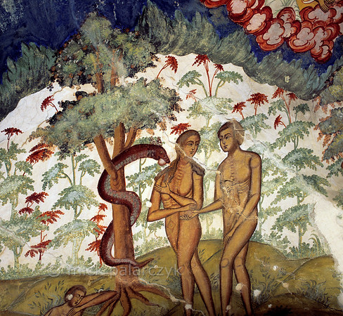 [RUSSIA.GOLDENRING 26.172] 'Eating from the Tree of Knowledge.'  	Coaxed by a snake Adam and Eve take apples from the Tree of Knowledge. The paradise they are living in is a brilliantly white space with fountain like trees overarched by a huge heavenly eyebrow. The scene was created by unknown 17th century artists in the southern vestibule of Tutayev's Resurrection Cathedral. Photo Mick Palarczyk.