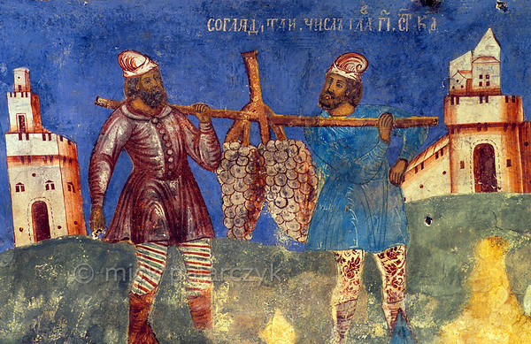 [RUSSIA.GOLDENRING 26.055] 'Huge grapes.'  The men sent out by Moses to assess the quality of the Promised Land brought with them a huge cluster of grapes (Numeri 13:23). Detail of 17th century fresco in the west vestibule of Yaroslavl's St. Elijah the Prophet Church. The painting was done by Gury Nikitin of Kostroma and his school. Photo Mick Palarczyk.