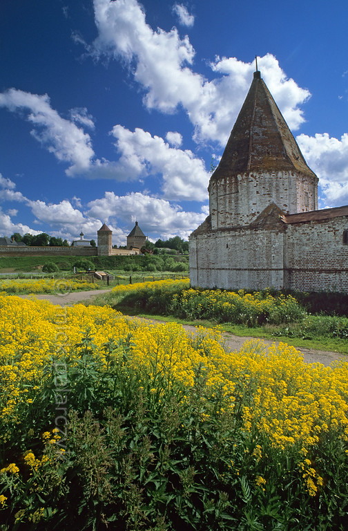 [RUSSIA.GOLDENRING 25.942] 'Wall-tower of Intercession Convent.'  Flowering coleseed surrounds a wall-tower of Suzdal's Intercession (Pokrovski) Convent at the lower western bank of the Kamenka River. On the higher eastern bank the Spaso-Yevfimiev Monastery can be seen. Photo Mick Palarczyk.