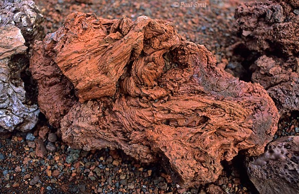 [SPAIN.CAN.LANZAROTE 9321] 'Volcanic bomb.'  Lava stone of a beautiful terracotta color, found in Timanfaya national park. It is a volcanic bomb, thrown into the air during the eruptions of the 18th and 19th century. Photo Paul Smit.
