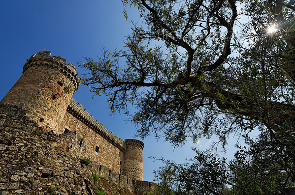 [SPAIN.CLEON 28606] 'Mombeltrán Castle.'  	The castle of Mombeltrán (Ávila province), surrounded by gnarled olive trees, sits south of the Puerta del Pico mountain pass in the Sierra de Gredos. Guarding the road from Toledo to Ávila, it was built in 1461. The castle's walls stand on powerful sloping batters which were designed to withstand attacks by artillery. Photo Mick Palarczyk.