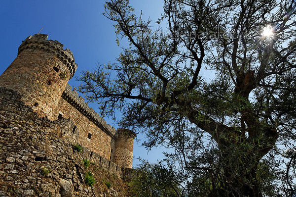 [SPAIN.CLEON 28605] 'Mombeltrán Castle.'  The castle of Mombeltrán (Ávila province), surrounded by gnarled olive trees, sits south of the Puerta del Pico mountain pass in the Sierra de Gredos. Guarding the road from Toledo to Ávila, it was built in 1461. The castle's walls stand on powerful sloping batters which were designed to withstand attacks by artillery. Photo Mick Palarczyk.