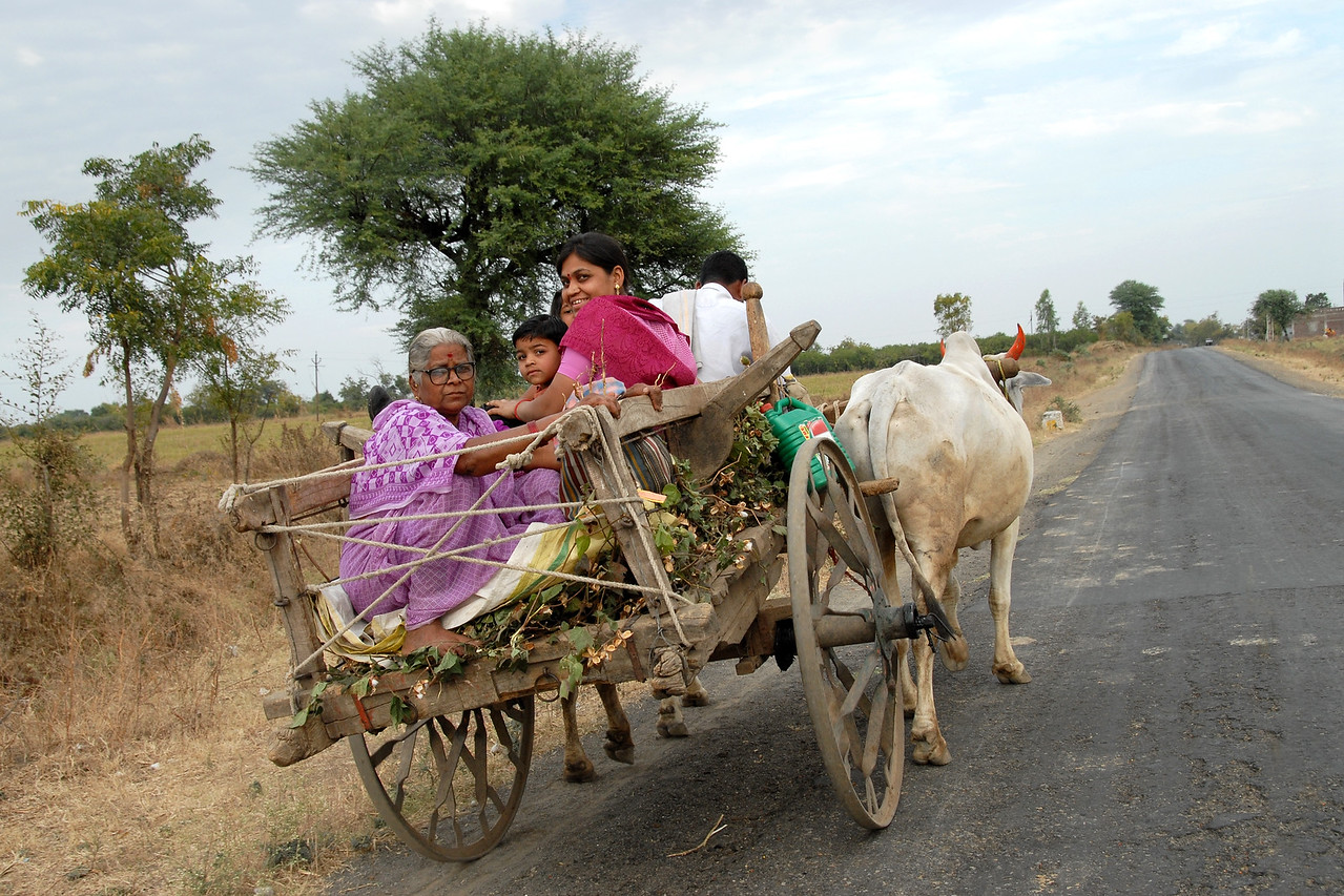 "India: ""The Super Highway"": This Maharashtraian family was travelling on the bullock cart in a slow and steady pace just as their ancestors have been doing for hundred of years. Jan 2007."