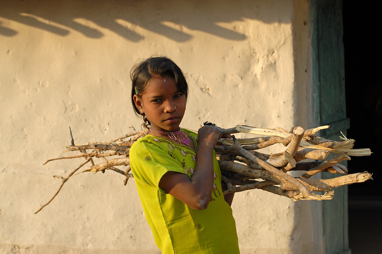 India: This young girl gathered and is carrying the fire wood to her home in a local village near Nagpur, Maharashtra. Living on the edge of a forest burning wood collected from the forest is the primary source of fuel.<br /> Jan 2007.