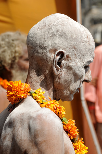 Naga sadhus (naked to sky holy monks) walk with great fan fare & beating of drums in a procession to the ghats. As per tradition, the Naga sadhu's have the first right of bathing in the holy Ganga on the occasion of Kumbh Mela's Shahi Snan (royal bath).<br /> <br /> <br /> Kumbh Mela is the biggest religious gatherings on the planet which takes places on the banks of the river Ganga. The number of pilgrims this year is expected to exceed around five million since the first day Jan 14 till the time it concludes on April 28, 2010. The auspicious days of the shahi snan or royal baths usually draw hundreds of thousands of devotees to the Har Ki Paudi and other banks of the river. Uttarakhand. North India. The occasion draws pilgrims from around the world and severly overloads the infrastructure so most of the city is shut down for any vehicles other than security or emergency services so a sea of humanity walks through the city to get to the bathing ghats.