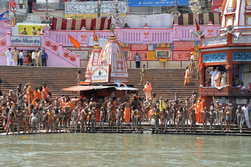 Naga sadhus (naked monks who have renounced everything including cloths) of various akhadas (groups) arrive in sequence to the Har Ki Pauri ghat of river Ganga at Haridwar. Procession of Naga sadhus arrives. As per tradition, the Naga sadhu's have the first right of bathing in the holy Ganga on the occasion of Kumbh Mela.<br /> <br /> <br /> Kumbh Mela is the biggest religious gatherings on the planet which takes places on the banks of the river Ganga. The number of pilgrims this year is expected to exceed around five million since the first day Jan 14 till the time it concludes on April 28, 2010. The auspicious days of the shahi snan or royal baths usually draw hundreds of thousands of devotees to the Har Ki Paudi and other banks of the river. Uttarakhand. North India. The occasion draws pilgrims from around the world and severly overloads the infrastructure so most of the city is shut down for any vehicles other than security or emergency services so a sea of humanity walks through the city to get to the bathing ghats.