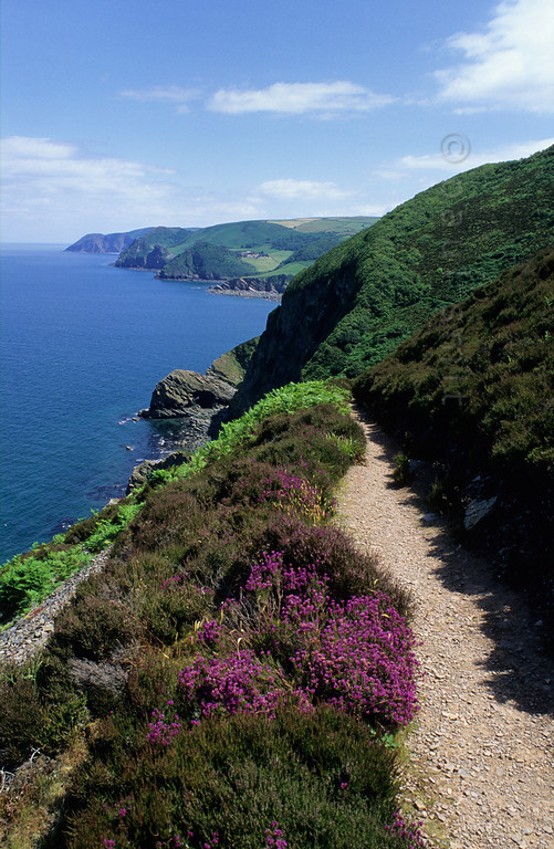 [GREATBRITAIN.SOUTH 2253] 'Exmoor's coast.'  Exmoor has a high and beautiful cliff coast. A spectacular path connects Lynmouth and Heddon's Mouth. Photo Paul Smit.