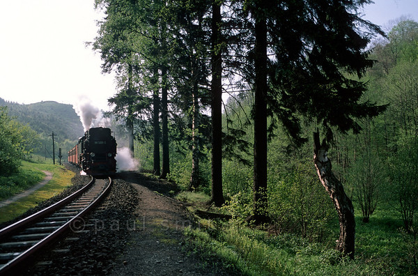 [GERMANY.SACHSENANHALT 11006]  'Selke Valley Railway.'  The Selke Valley Railway (Selketalbahn) is a narrow-gauge railway, winding through the friendly lower Harz mountains. Rare steam engines are used, of which only 27 have been ever built. This one, 99 7233, dates from 1954. Photo Paul Smit.