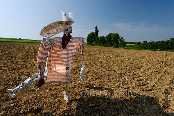 [FRANCE.JURA 29110] 'Scarecrow south of Chancey.'  	A scarecrow with an elongated hat guards a field near Chancey, a village 30 km west of Besançon. Photo Mick Palarczyk.