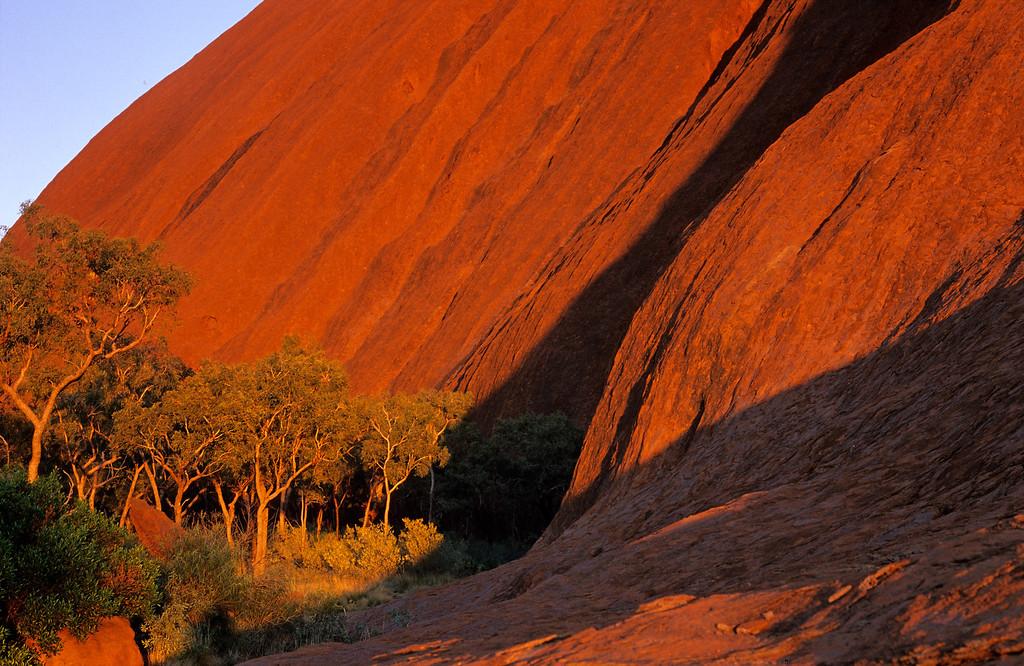 [AUSTRALIA.NTERRITORY 9828] 'Uluru seen from close by.'  Uluru (Ayers Rock) seen from close by, in the light of sunrise. Photo Paul Smit.