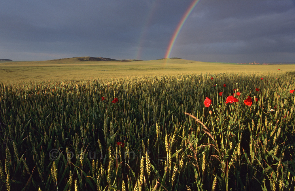 [GERMANY.THÜRINGEN 11021] 