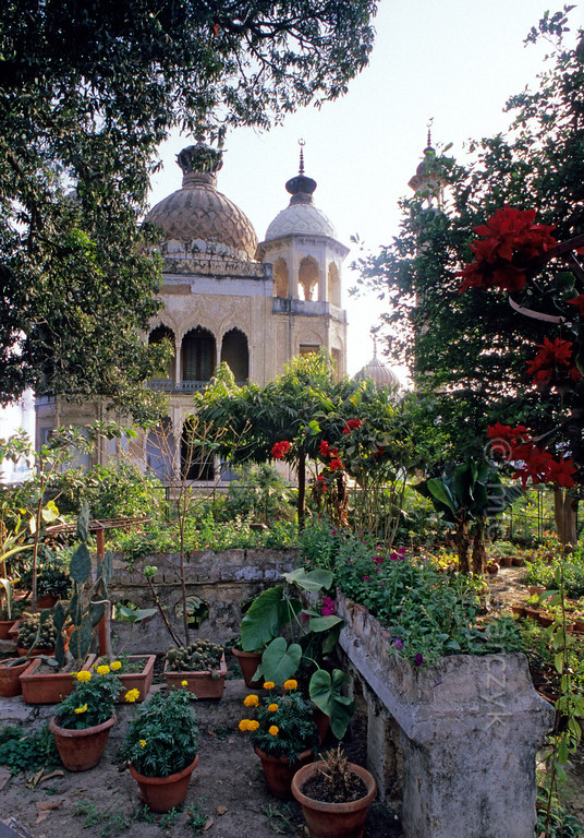 [INDIA.UTARPRADESH 27184] 'Garden in Lucknow.'  	A lush garden in the Hussainabad Imambara in Lucknow offers a view of the mausoleum that Muhammad Ali Shah built in 1837 for one of his relatives. Photo Mick Palarczyk.
