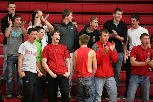 St. Anthony basketball fans cheer after a made shot during the St. Anthony girls' 41-30 home victory over Newton.