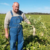 Steve Robinson of rural Edgewood stands in his 200-acre field full of radishes. The radishes aren't for human consumption, but to condition the soil for future corn and soybean crops.