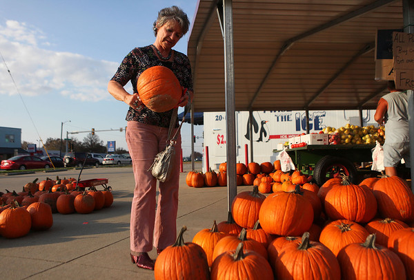 "Patricia Jones, of Wheeler, picks a pumpkin from Sean Morris's produce stand on Fayette Avenue. ""It's funny, but pumpkins call you,Ó she said. ÒAnd that one called me."""