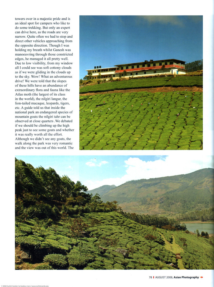 """Asian Photography <a href=""""http://www.asianphotographyindia.com/"""">http://www.asianphotographyindia.com/</a>  August 2008 Issue Travel Feature Article """"Misty Munnar: India's very own Switzerland"""" by Anu (Arundhathi) & pictures by Suchit Nanda.  <br /> <br /> Asian Photography is India's premier and oldest photography magazine.  <br /> <br /> You can read the full article with full size images at:   <a href=""""http://suchit.net/writing/munnar2008.htm"""">http://suchit.net/writing/munnar2008.htm</a>"""