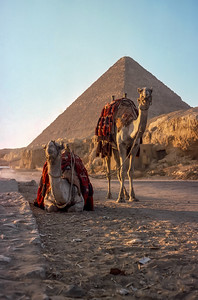Giza Sunset - Last Night