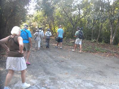 Group Cozumel