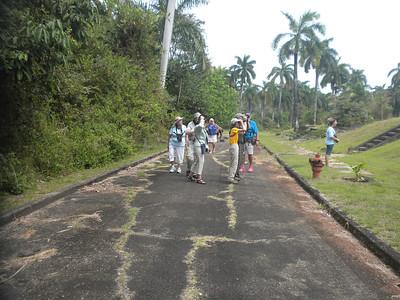 Group Panama