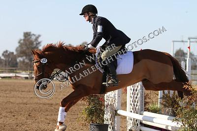 Horse167_20130217_3225