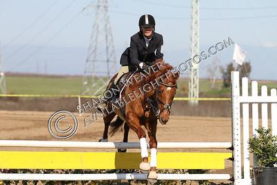 Horse167_20130217_3227