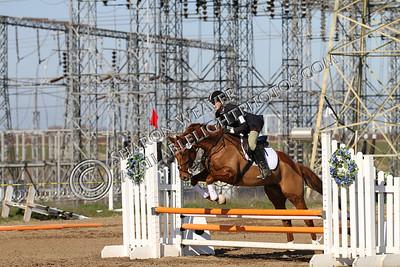 Horse167_20130217_3228