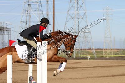 Horse167_20130217_3226