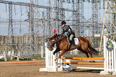 Horse167_20130217_3229