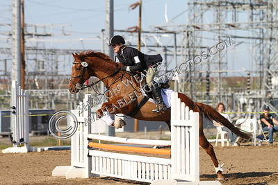 Horse167_20130217_3230