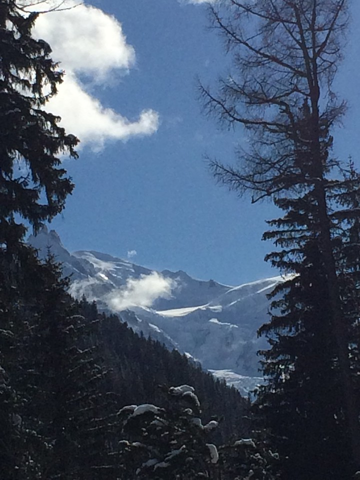 160 Mont Blanc from Grands Montets