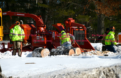 2/14/2017 Mike Orazzi | Staff Bristol Public Works employees cut up a tree that fell during Tuesday's winds at the intersection of Hill Street and Route 6 in Bristol on Wednesday.