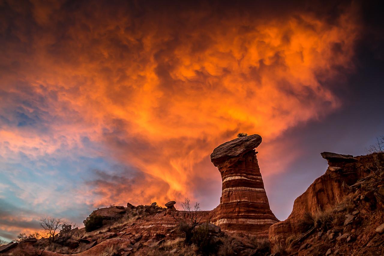 2016 Landscape Contest Winner, Palo Duro Canyon State Park