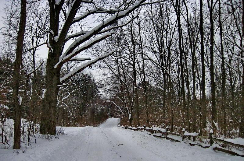 2/10   Classic Michigan Winter Scene