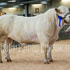 Lot 24 sold for 4800 gns from Mr R A Owen
