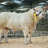 Lot 33 sold for 4500 gns from Mr R A Owen