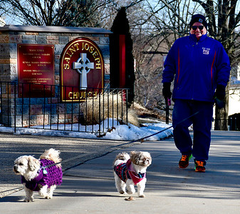 2/26/2019 Mike Orazzi | Staff Gary Rafaniello while walking his dogs Coco,6 and Bell,4, on Federal Hill in Bristol Tuesday.