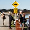 Sea Otter Crossing in Moss Landing