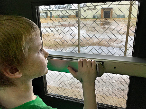 KEVIN HARVISON | Staff photo<br /> Jason Boyko, looks out the door of his Emerson Elementary School after he learned recess has been rained out.