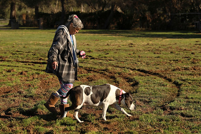 Gail Munro looks at the vandalized field at Martin Luther King Jr. Park in Oroville, Monday Feb. 3, after a motorist tore up the grass over the weekend. (Carin Dorghalli -- Enterprise-Record)