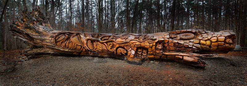 Art Tree at Umstead Park