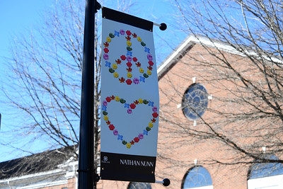 Artist Nathan Nunn's piece is on display on Griffith Street - across from Davidson Day School.