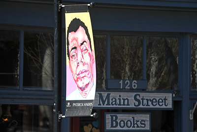 Artist Patrick Harris' piece is located on Main Street in front of Main Street books.
