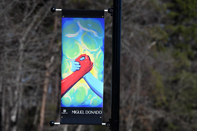 Artist Miguel Donado's piece is located on Griffith Street near the Community School of Davidson.