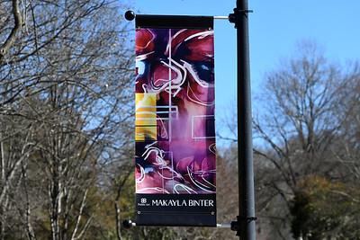 Artist Makayla Binter's piece is located along the sidewalk in Roosevelt Wilson Park.
