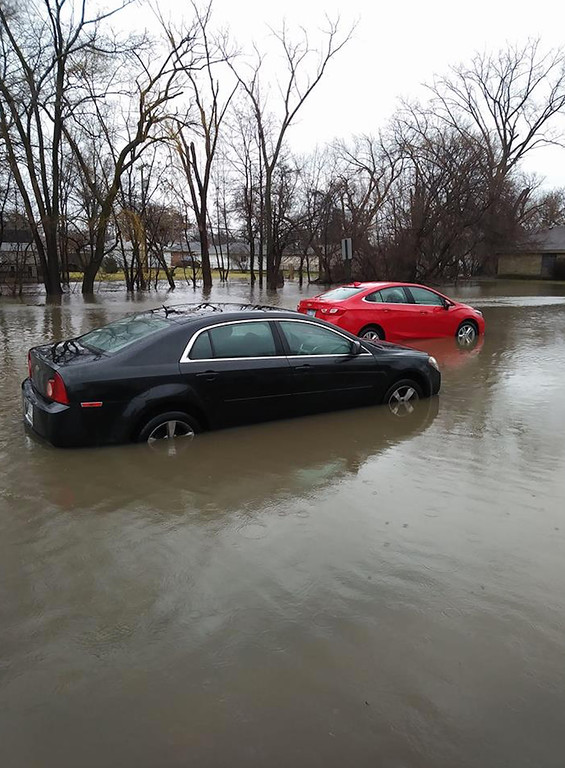 . This image comes from  Steve Atanasovski in Allen Park.