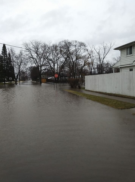 . More ponding water, covering a full intersection. Photo by Steve Atanasovski in Allen Park.