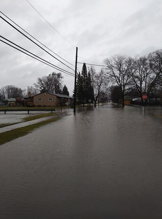 . Steve Atanasovski in Allen Park took this photo of roadways completely flooded.