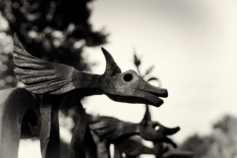Flying Wolf: as seen above a gate in an unusual garden