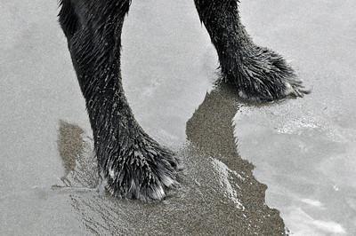 Malcolm's feet