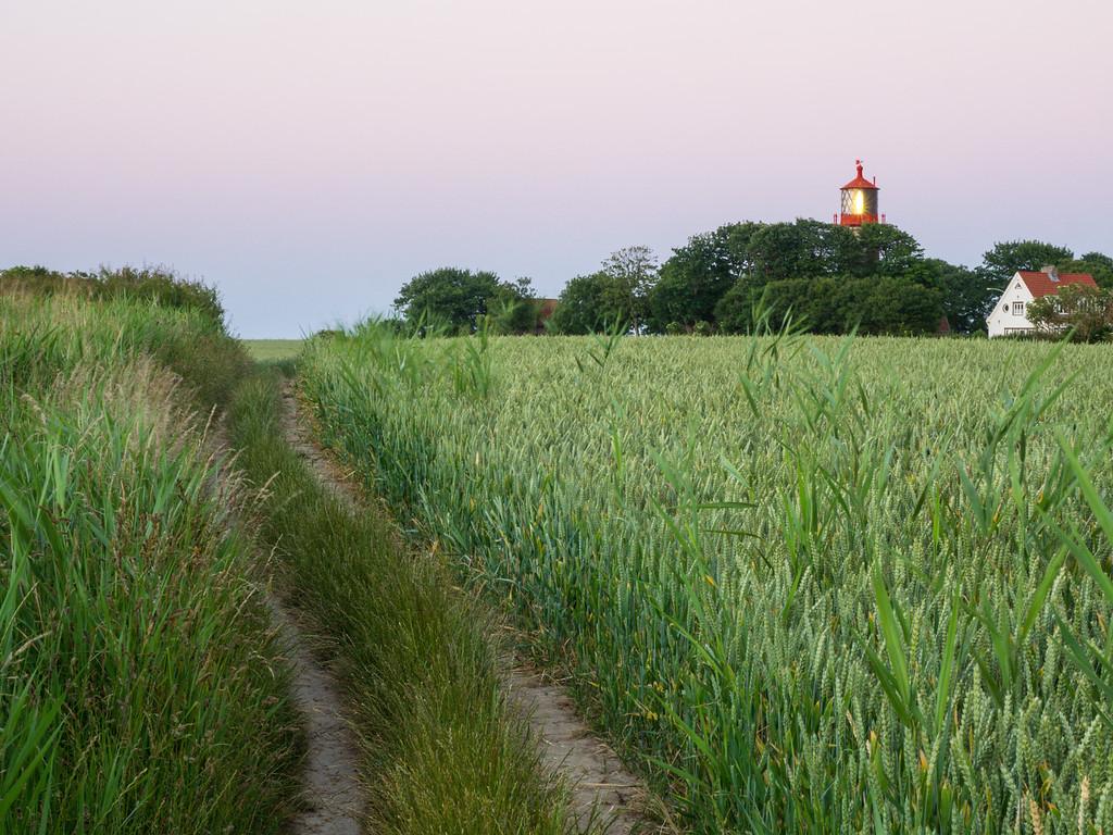 Feldweg am Leuchtturm Staberhuk
